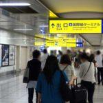 羽田空港のサインとインフォグラフィックス / Haneda Airport Signs and Infographics
