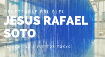 "JESUS RAFAEL SOTO ""PENETRABLE BBL BLEU"" at ESPACE LOUIS VUITTON TOKYO"
