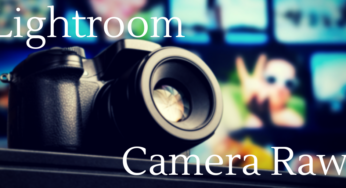 LightroomやCamera RawでRAW現像する時のオススメ手順
