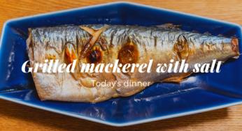 前菜、サバのグリル塩焼き、ストウブのラタトゥイユ|190705夕食