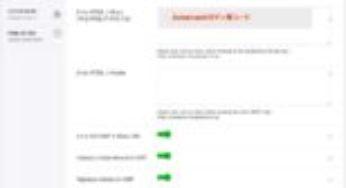 サイトを再びAMP対応に。「AMP for WP」-「Advance Settings」項目の設定内容とヒントの意訳