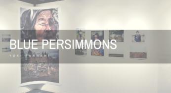 岩波友紀 写真展「Blue Persimmons」 :震災後の福島の姿を精緻な描写で表現